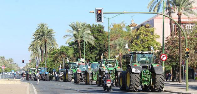 Un millar de vehículos claman en Sevilla por una PAC justa para los agricultores de Andalucía