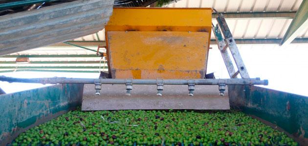 Los olivareros piden al MAPA un cambio legal en los plazos de pago que evite el hundimiento del sector
