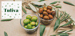 Tuliva, un innovador envase con harina de semilla de aceituna