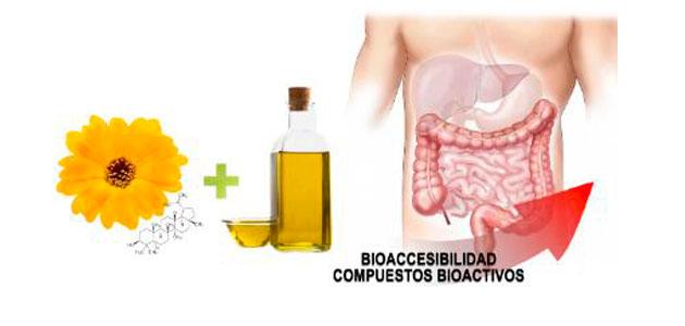 La absorción de compuestos bioactivos de caléndula mejora con aceite de oliva