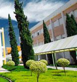 """La UJA oferta el máster """"Olivar, Aceite de Oliva y Salud"""" para el próximo curso 2014/15"""