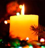 Los productores de AOVE festejan la Navidad con nuevos lanzamientos e iniciativas
