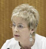 El Plan Director del Olivar conseguirá un sector más competitivo, moderno y profesionalizado, según Víboras