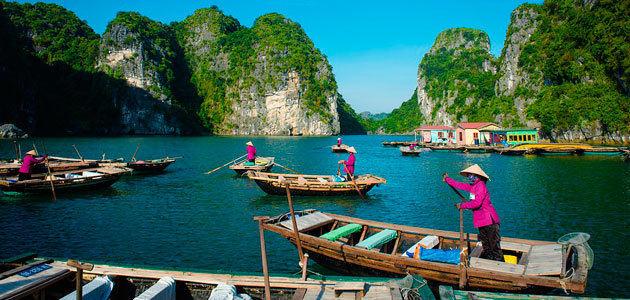 El éxito del aceite de oliva en el mercado vietnamita