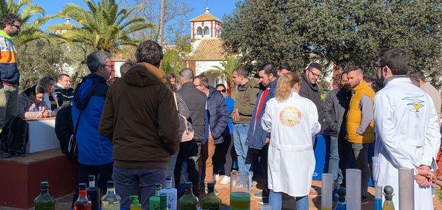 Comienza la edición 2020 de las Visitas Solidarias al Olivo en Hacienda Guzmán