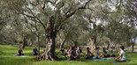 Yoga, meditación y Dieta Mediterránea, un trinomio saludable